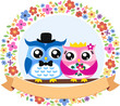 owl bride and groom