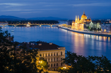 Danube River and Parliament View
