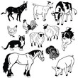 vector set with farm animals black and white