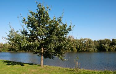 Am Ufer der Fulda