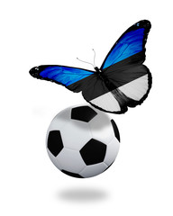 Concept - butterfly with Estonian flag flying near the ball, lik