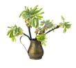Young branch of horse chestnut tree in copper jug