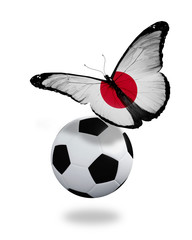 Concept - butterfly with Japanese flag flying near the ball, lik