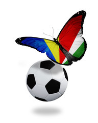 Concept - butterfly with Seychellois flag flying near the ball,