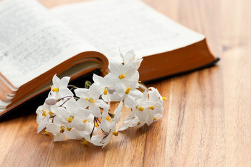 Aufgeschlagenes Gebetbuch mit Jasminblüten