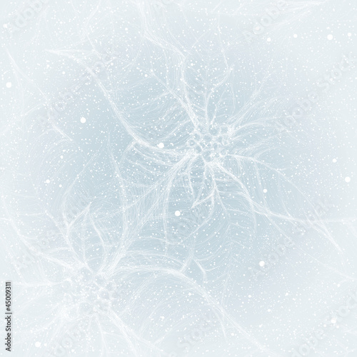 Frost on the window like Flower Poinsettia / Seamless pattern