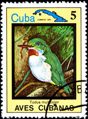 Todus Multicolor, from Series Cuban Birds