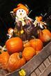 Autumn / Halloween 6
