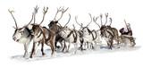 Fototapety Santa Claus in a sleigh