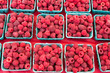 Boxes of fresh red raspberries