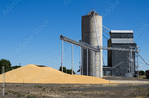 Grain elevator with pile of grain