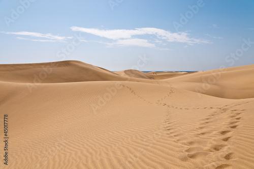 Aluminium Woestijn Dünen Maspalomas 3