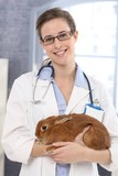Smiling veterinary with patient