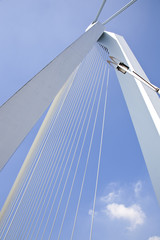 Detail of Erasmus bridge in Rotterdam, The Netherlands