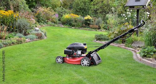 Rasenmäher im Garten - 45022981