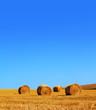 rolled hay bales