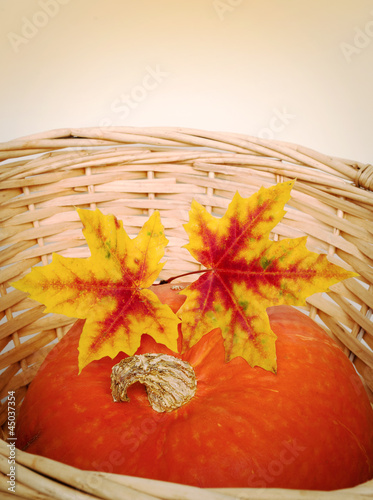 A pumpkin with colorful autumn leaves in basket
