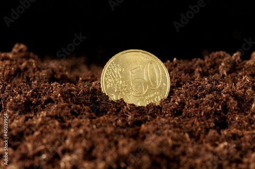 euro money growing in the ground