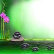 Bambus, Orchidee und Steine