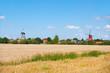 Greetsieler Zwillingsmühlen hinter Kornfeld