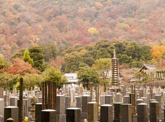 Japanese graveyard in autumn