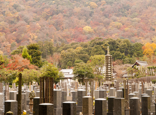 Japanese graveyard in autumn