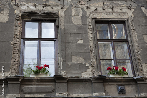 old building windows with flowers