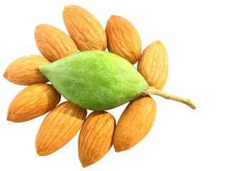 decorative arrangements of  almond nuts