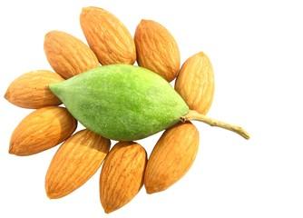 decorative arrangements of  almond nuts