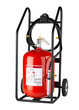 Roller fire extinguisher useful for fire protection