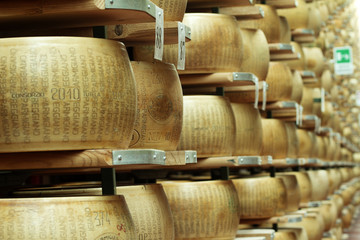 typical italian cheese