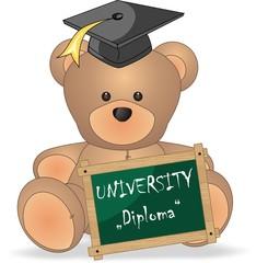 teddy bear university diploma