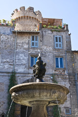 Monumental fountain. Bagnaia. Lazio. Italy.