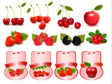 Big set of fresh cherries and fruit and labels  Vector