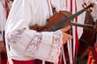Details of violin