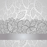 Fototapety Luxury silver leaves lace border and background