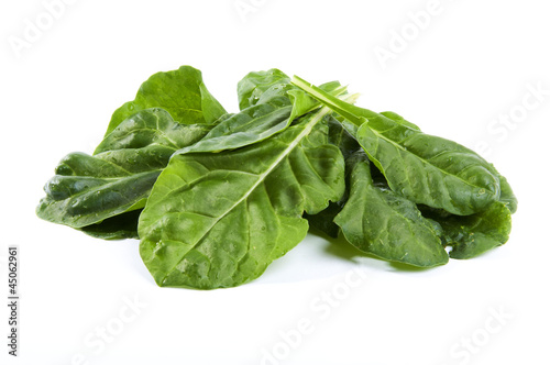 fresh chard on a white background