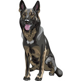 vector color sketch black dog German shepherd breed