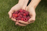 Raspberry in hands