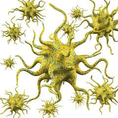 Virus isolated on white