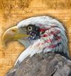 Aguila con bandera americana y documentos históricos.