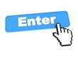 Enter Web Button.