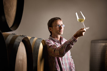 Winemaker analyzing a glass of white wine in cellar.