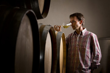 Winemaker in cellar smelling white wine in glass.