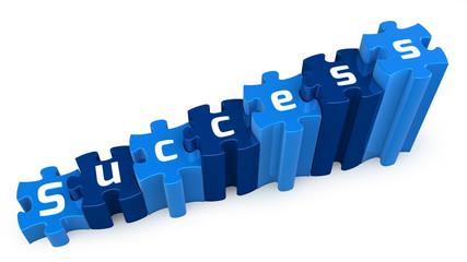 success puzzle 3d text