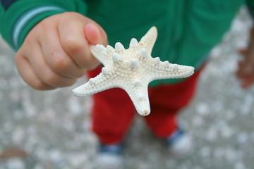 Holding a Starfish