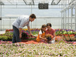 """USA, Utah, Salem, girl (8-9) with parents choosing plants in greenhouse"""