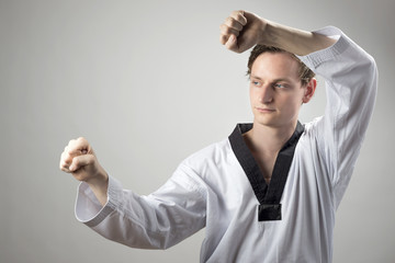 Taekwon-Do defense