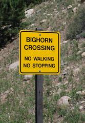 Warning sign: Big Horn Sheep Crossing