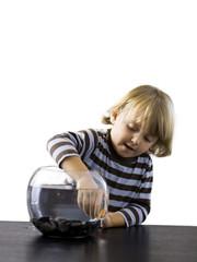 """""""USA, Utah, Provo, Boy (2-3) touching goldfish in bowl"""""""